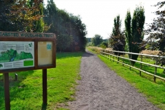 Bearsted-Woodland-Trust