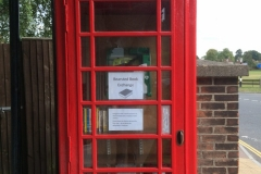 Phone-box-book-exchange-1-scaled